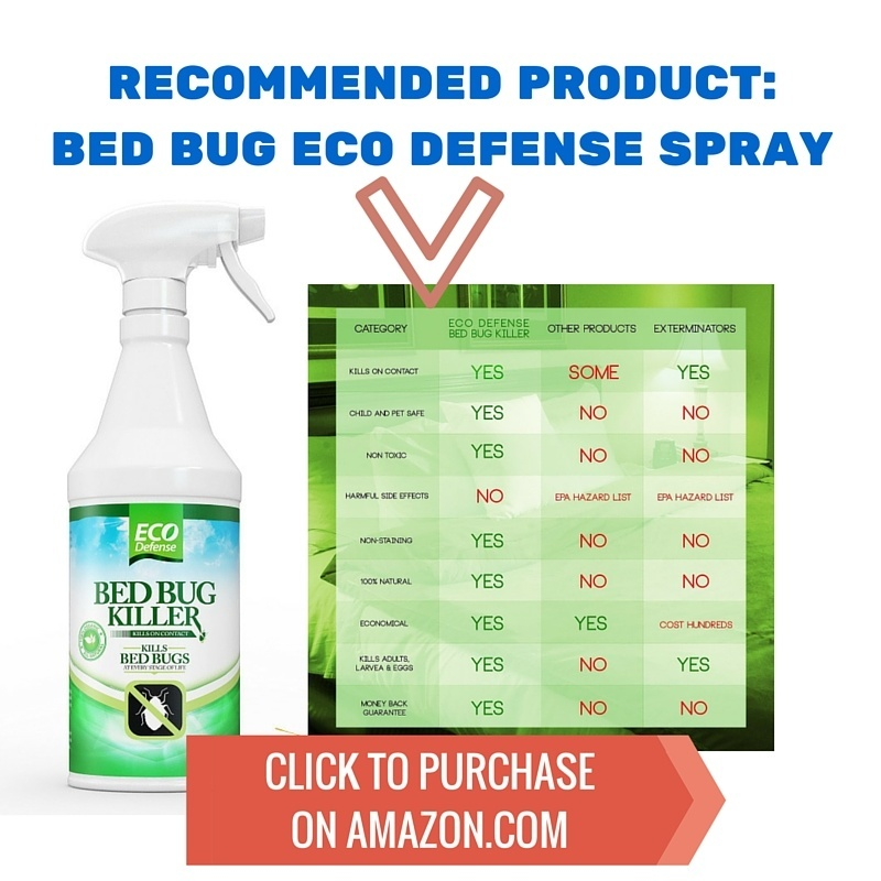 Bed Bug Spray - eco defense