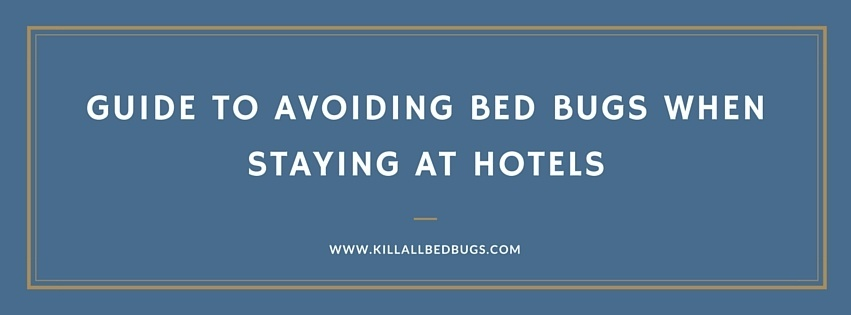 Guide To Avoiding Bed Bugs When Staying At Hotels