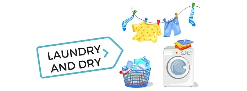 How To Get Rid of Bed Bugs - Laundry and Dry