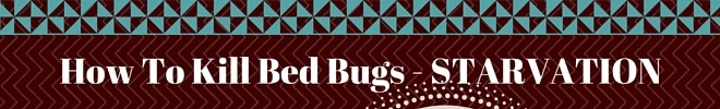 How to kill bed bugs - starvation -