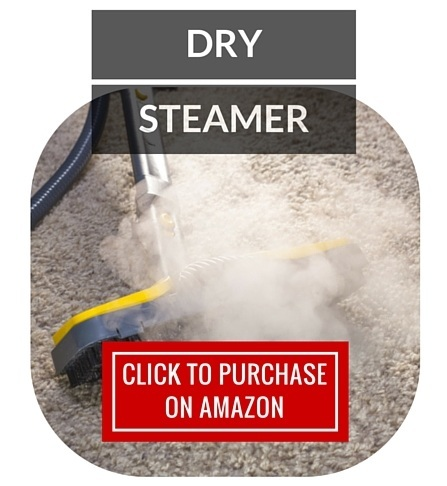 Kill Bed Bugs - DRY STEAMER
