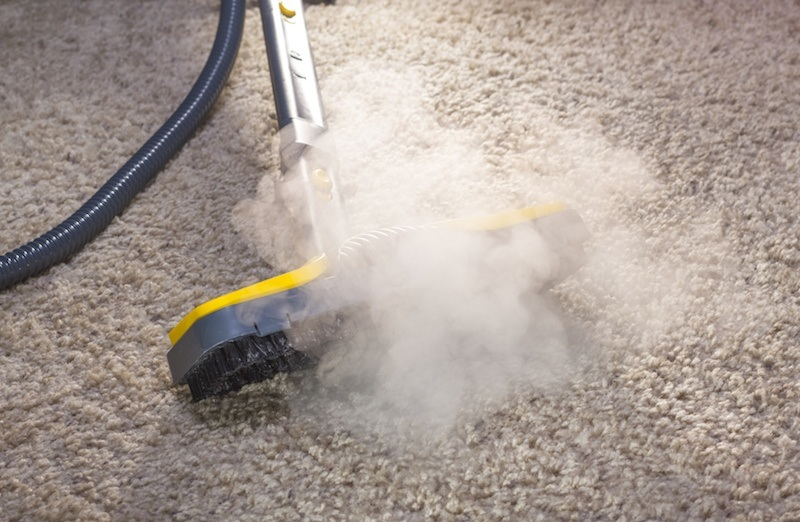 dry steamer kills bed bugs and their eggs