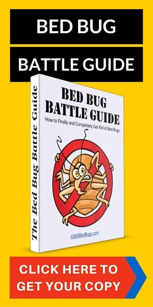 Bed Bug Battle Guide
